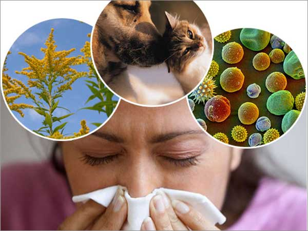 allergies treatment bangalore